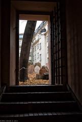 Dense history (@photobjorn) Tags: door autumn fall gate prague wideangle staircase czechrepublic d200 urbanscapes tokina12244 apsc colorefex