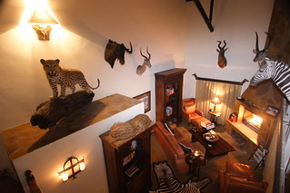 Namibia Safari - Lake Lodge 8