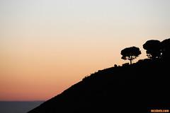 Malibu3463 (mcshots) Tags: ocean california travel autumn trees sea usa water coast stock malibu socal hillside mcshots susnet losangelescounty