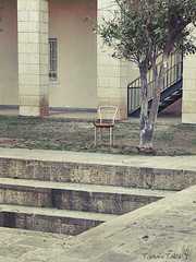 a yard (Tania's Tales) Tags: street city urban stilllife tree abandoned stairs outside chair furniture empty columns streetphotography marble armchair exploration            fotografiastradale taniastales