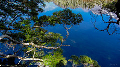 Just Like a Mirror (Jocey K) Tags: trees newzealand lake snow mountains water clouds reflections bush valley nz southisland lanscape mirrorlakes fiordlandnationalpark top20nz southwestnewzealandworldheritagearea