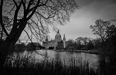 Rathaus Hannover (Maike B) Tags: winter blackwhite natur hannover sw rathaus neuesrathaus schwarzweis rathaushannover tokina1116f28 nikond7000