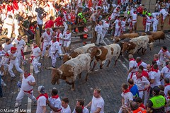 "6toros San Fermín Festival Pamplona 2013, Spain-2 <a style=""margin-left:10px; font-size:0.8em;"" href=""http://www.flickr.com/photos/116167095@N07/12268516843/"" target=""_blank"">@flickr</a>"