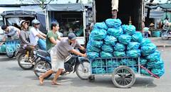 COURGETTE EN STOCK (louis.foecy.fr) Tags: asia vietnam travail asie march homme peine labeur vision:o