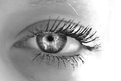 Eye (KianKrasheskyPhotography) Tags: macro eye