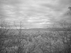 IR Twilight Picture Of The Area We Are About To Midnight MUSH