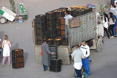 Unloading Oranges