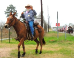 Randall Page and His Carmen (maorlando - God keeps me as I lean on Him!!) Tags: usa cowboy texas action rodeo cowboyhat rider mule cowboyboots trailride montgomerycounty trailrider top20texas randallpagehismulecarmen houstongowesterndays