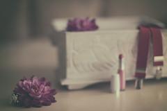 Complementos (Graella) Tags: flores flowers pintalabios tirantes stilllife bodegón rosa pink vintage lipstick suspenders