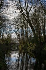 Williamson Bridge, East Marton (ProspectMik) Tags: leedsliverpoolcanal yorkshire boats bridge canal morning nikon reflection sigma50mm stone trees