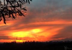 Cada Tarde... (ManickX92) Tags: sol arbol atardecer nubes silueta sombras siluetas horizonte temuco antenas naranjo novenaregion temuco2013