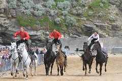 3 People Standing on 6 Horses and racing. (Adrian Midgley) Tags: family horse movie bay team daniel devils horsemen cossack riding devil trick camilla gerard stunts thedevilshorsemen naprous watergat