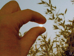 Catching the sun (Louve Solitaire) Tags: sun soleil hand main illusion photophone