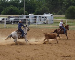 Welch Jr Rodeo, July 2013 (Garagewerks) Tags: boy horse man oklahoma sport race america outdoors cowboy child sony country barrel rope sp american ama di rodeo arkansas cowgirl 70300mm tamron vc usd a77 countryliving barrelracing barrelrace f456 teamroping
