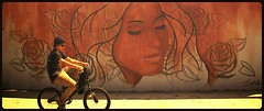 Bike by Graffiti (See El Photo) Tags: california ca street city venice red roses people urban 15fav favorite streetart man color colour guy face sunglasses bike cali digital 510fav canon outside outdoors person eos rebel graffiti bmx colore ride grafiti wheels young dude urbanart sidewalk filter transportation biker venicebeach dirtbike fav graff peddle beanie grafite faved t1i