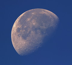 26-08-13 Morning Setting Moon (James Lennie) Tags: moon canon day bluesky luna devon daytime lunar moonset moonshot refractor ed80 skywatcher mooncloseup lunarphase waningmoon lunarphotography canon600d lunarcloseup