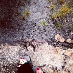 feet (Laurkat9) Tags: feet me toes solitude joy rocky hike lookingdown silliness arabiamountain arabiamountainnationalheritagearea