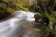 (Juan Jose Herrero Garcia) Tags: rio arboles pentax sigma paisaje otoño 1020 cantabria jajo largaexposicion ucieda juanjoseherrerogarcia
