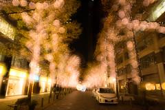 Light decoration in Marunouchi, Tokyo (Takashi(aes256)) Tags: light japan tokyo doubleexposure decoration 東京 marunouchi yurakucho multiexposure 多重露光 chiyoda 丸の内 有楽町 イルミネーション 二重露光 nikond4 nikonafsnikkor1424mmf28ged