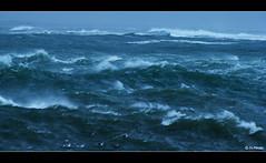 Audierne tempte Dirk dec 2013 05 (jo.pensel) Tags: ocean sea mer storm vent brittany wave bretagne breizh cap vague phare dirk tempte finistre ocan finistere goyen pensel audierne penarbed esquibien capsizun jopensel phareduraoulic photobretagne photographebretagne jocelynpensel jocelynpenselphotographe jopenselcom