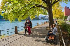 Walking together near the Rhein River . Basel in Autumn 20