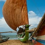 Catamaran thumbnail