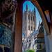 National Cathedral - Washington DC