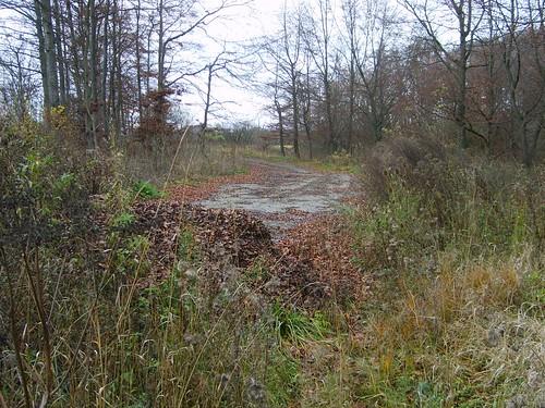 A8 ehem. Parkplatz westl. Merklingen Nov. 2006_004