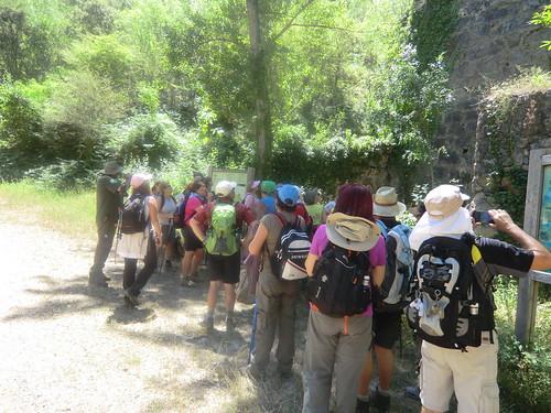 Fotografía Paquita Valdi Marcha 391 27 y 28 de Junio Parque Natural de la Encina de Lastra Ourense 2 (14)