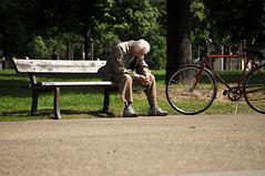 Una storia gi scritta - A story already written. (sinetempore) Tags: park street old trees parco man bike alberi bench torino ancient uomo elderly bici turin vecchio bicicletta panchina anziano mygearandme unastoriagiscritta astoryalreadywritten