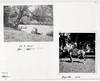 Rittergut Orr - Uta Westphal Erinnerungen - 68