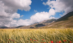piana di Castelluccio (invitojazz) Tags: clouds montagne nikon nuvole day cloudy montains d90 castellucciodinorcia invitojazz vitopaladini