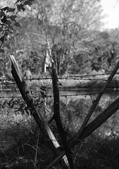 A Hearth Without a Home - HFF (TuthFaree) Tags: chimney bw brick ga fence georgia farm south country farming pse t3i photoshopelements swgeorgia canont3i canonef70300mmf456lisusmlens