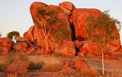 Devils Marbles in the morning light #1(Explore) (robynbrody) Tags: trees red sky nature grass rocks centre australia granite northernterritory devilsmarbles centralaustalia stuarthighway
