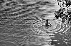 Early morning bath.. (ws_photography) Tags: road morning water bath local ganges ghat 18200mm