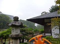 Charizard in Hiroshima, Hiroshima 1 (Shukkei-en Garden) (Kasadera) Tags: toys hiroshima figure pokemon pokmon  charizard   glurak  shukkeiengarden pokemonkids   dracaufeu