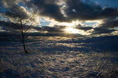 Christmas Eve Sunset (Dalliance with Light (Andy Farmer)) Tags: winter sunset snow ice nature unitedstates michigan lakemichigan icestorm christmaseve muskegon dunegrass muskegonstatepark