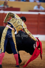 www.standehaas.com (Stan de Haas Photography) Tags: madrid plaza blue red sky people art animal sport danger outdoors costume blood spain sand europe kill risk action stadium traditional attack culture ole bull bulls seville tourists arena dirt spanish bullfighter torture cape fans concept tradition bullfight corrida toro toreador bullring bullfighting courage violent matador torero standehaas