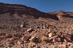 20140103 - Sahara1 (Ryoushi no syokubutsuen) Tags: art sahara nature landscape desert arabic berber marocco marrakech magrib almagrib medrassa