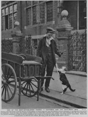 1920s Cat's Meat Man (messy_beast) Tags: 1920s food london cat onderfullondon