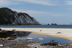 20140202-38-Tannin stained creek at Hidden Bay.jpg (Roger T Wong) Tags: camp water creek trek nationalpark walk australia hike tasmania np bushwalk tramp wha southwestnationalpark tannin canonef24105mmf4lisusm worldheritagearea hiddenbay canon24105 canoneos6d