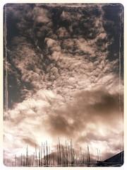 1816 The Clouds 2 (Nebojsa Mladjenovic) Tags: light sky mist france art nature monochrome clouds digital french outdoors lumix frankreich burgundy panasonic frankrijk bourgogne francia priroda morvan francais fz50 yonne svetlost mladjenovic