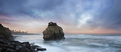san diego : ocean beach / sunset cliffs park (William Dunigan) Tags: ocean park sunset sea seascape bird beach nature rock clouds sunrise landscape photography san long exposure waves diego william cliffs formation dunigan