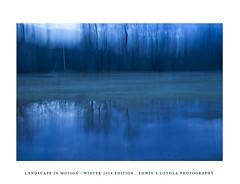 LANDSCAPEINMOTION2015-005 (Edwin Loyola) Tags: winter abstract nature landscape seasons icm intentionalcameramovement landscapeinmotion edwinsloyola edwinloyola edwinsloyolaphotography