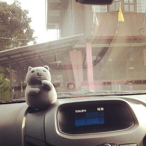 วันนี้นางนึกอยากเปงแม่ย่านางรถ ออกไปพบปะผู้คนนอกร้าน #เหมียวฟินมาก