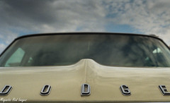 Dodging the Raindrops (magnetic_red) Tags: blue sky classic yellow clouds emblem perspective dodge mopar ilobsterit