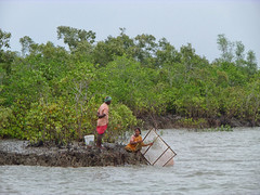 Life (Kingshuk Mondal) Tags: life people still couple kingshuk sundarban sundarbannationalpark kingshukmondal