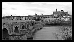Crdoba (Lourdes S.C.) Tags: bw espaa byn rio andaluca spain mezquita andalusia crdoba puenteromano