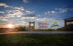 Lot 532 Nash Street - Windmill Downs Estate, Tamworth NSW