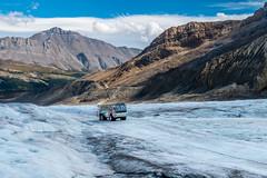 Snowbus sur le glacier Athabasca (Seb & Jen) Tags: rocheuses rockies alberta canada athabasca glacier icefield columbia snowbus